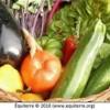 Atelier sur le développement de l'agriculture et l'agroalimentaire