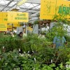 Moissons en Fleurs 2013 : Affluence record