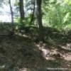 Activité d'orientation en forêt dans les Sentiers de L'Escapade du Mont Rigaud