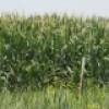 Zone agricole de Beauharnois-Salaberry – Présentation du projet de développement