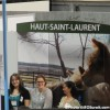 Haut-Saint-Laurent : mandat de promotion touristique au CLD