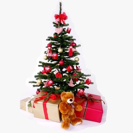 Où et quand recycler nos sapins de Noël?