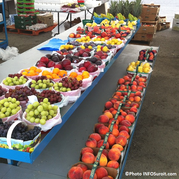 Marche-public-Valleyfield-fruits-peche-raisin-banane-ananas-Photo-INFOSuroit-com_