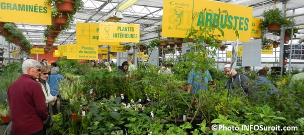 Moissons-en-Fleurs-graminees-arbustes-plantes-vivaces-et-visiteurs-Photo-INFOSuroit_com