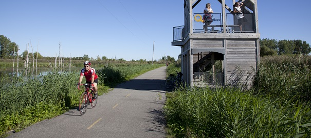 Piste-cyclable-Parc-regional-de-Beauharnois-Salaberry-Halte-du-Heron-Photo-courtoisie-MRC-BHS