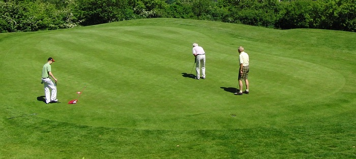 golf-vert-green-golfeurs-Photo-Pixabay