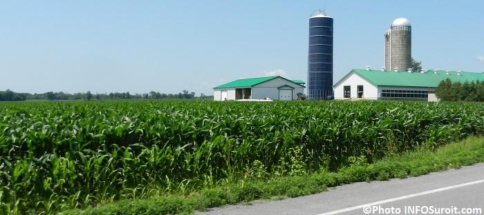 agriculture depuis route 201 a Ormstown ferme a St-Stanislas-de-Kostka Photo INFOSuroit_com