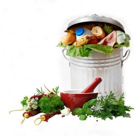 conferences Vers le vert plantes comestibles compostage zero dechet visuel courtoisie pour infosuroit