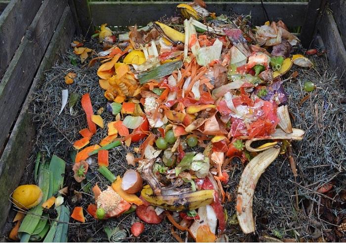 compostage-matieres-organiques-photo-pixabay-publiee-par-infosuroit-com