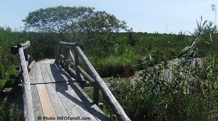 Reserve-nationale-de-faune-lac_St-Francois-sentier-pont-Photo-INFOSuroit_com