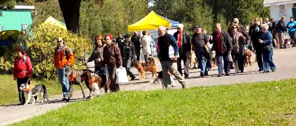 PattesdelEspoir chiejns et marcheurs pour la SCCancer Extrait video PattesdelEspoir
