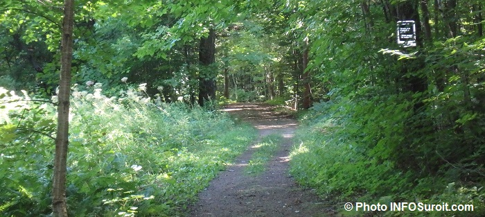 Sentiers de L_Escapade sur montagne Rigaud Photo INFOSuroit_com