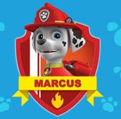 marcus-de-la-patpatrouille-vignette-courtoisie-securite-incendie