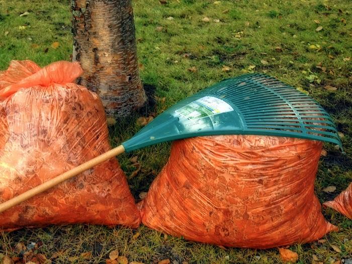 feuilles-mortes-automne-sacs-plastiques-orange-photo-pixabay-via-infosuroit