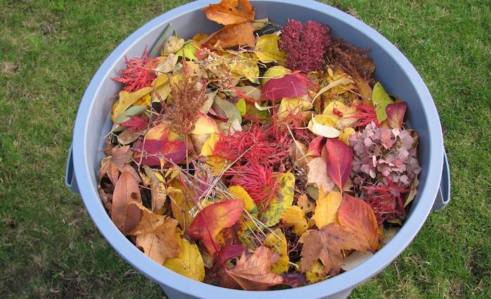 feuilles-mortes-residus_verts-poubelle-photo-courtoisie-ville-de-beauharnois