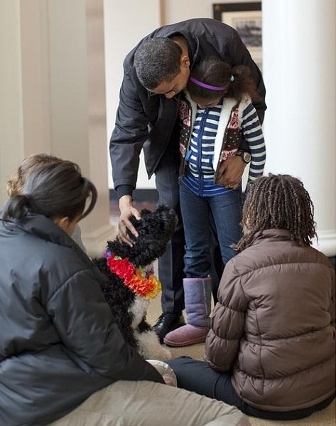famille-accueil-enfant-chien-photo-janeb13-via-pixabay