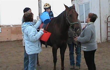 cheval enfant famille Centre equestre therapeutique Marie-Laurence Photo courtoisie CETML