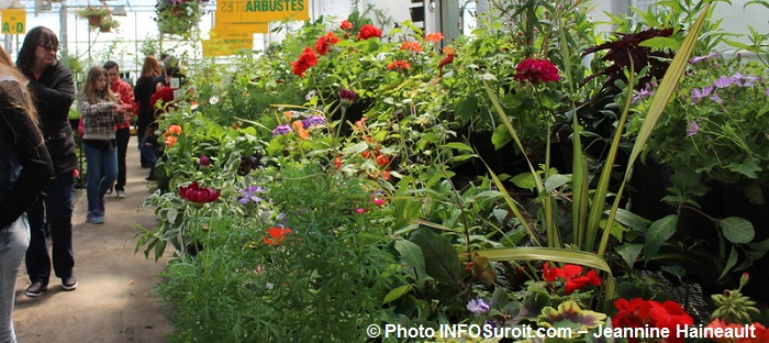 arbustes fleurs annuelles Centre des Moissons 2016 Photo INFOSuroit-Jeannine_Haineault
