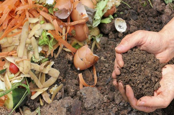 compostage domestique restes de table Photo courtoisie Ville Chateauguay