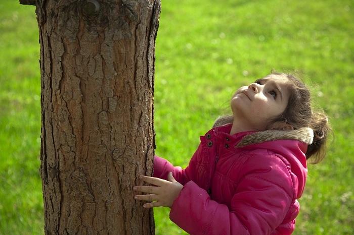 nature arbre enfant environnement Photo TunaOlger via Pixabay