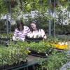 Le printemps arrivera vendredi à Beauharnois avec Moissons en fleurs