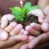 Une opportunité de partager et d'échanger vos plantes