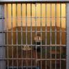 Tourisme – Pris au piège, jeu d'évasion unique à Valleyfield