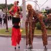 Festival de cirque, un succès malgré la pluie