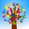 Économie sociale – une enquête régionale pour les OBNL