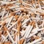 La GRC de Valleyfield et la SQ saisissent 10,8 millions de cigarettes et arrêtent 9 contrebandiers dans la région