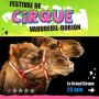 Le 7e Festival de cirque de Vaudreuil-Dorion promet :)
