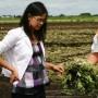 Microrafale du 4 juillet: Anne Quach demande l'aide d'Ottawa pour soutenir les agriculteurs touchés