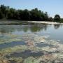 Film sur la rivière St-Louis : recherche de lieux de tournage