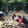 Le site archéologique de L'Île-aux-Tourtes sera classé patrimonial