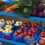Présentation d'un documentaire sur l'agriculture locale