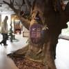 Explorez vos origines au Musée d'archéologie de Roussillon