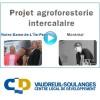 Le CLD Vaudreuil-Soulanges lance une première Infovidéo