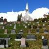 École du patrimoine : les églises au cœur du paysage culturel