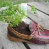 Recyclez vos souliers en pots de fleurs au MUSO
