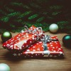 Une première édition pour le Marché de Noël de Rigaud