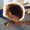 Les arbres abattus rue Victoria récupérés au profit des citoyens