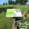 Un aménagement paysager reconnu par le Jardin botanique
