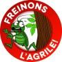 Agrile du frêne – La lutte se poursuit à Vaudreuil-Dorion
