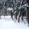 Tourisme – Le Bois Robert : extraordinaire en toute saison