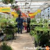 5 et 6 mai : vente de plantes et fleurs au CFP des Moissons