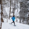 Plein air – Découvrir ou redécouvrir le Bois Robert