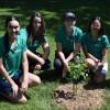 L'escouade verte de la MRC pour la promotion de pratiques écoresponsables