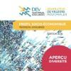 DEV VS publie un aperçu des statistiques sur la diversité ethnoculturelle