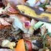 Collecte de résidus alimentaires : bilan positif dans Vaudreuil-Soulanges