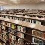 Une programmation hiver-printemps pour tous à la bibliothèque Armand-Frappier